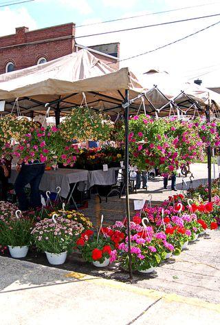 Market - flowers